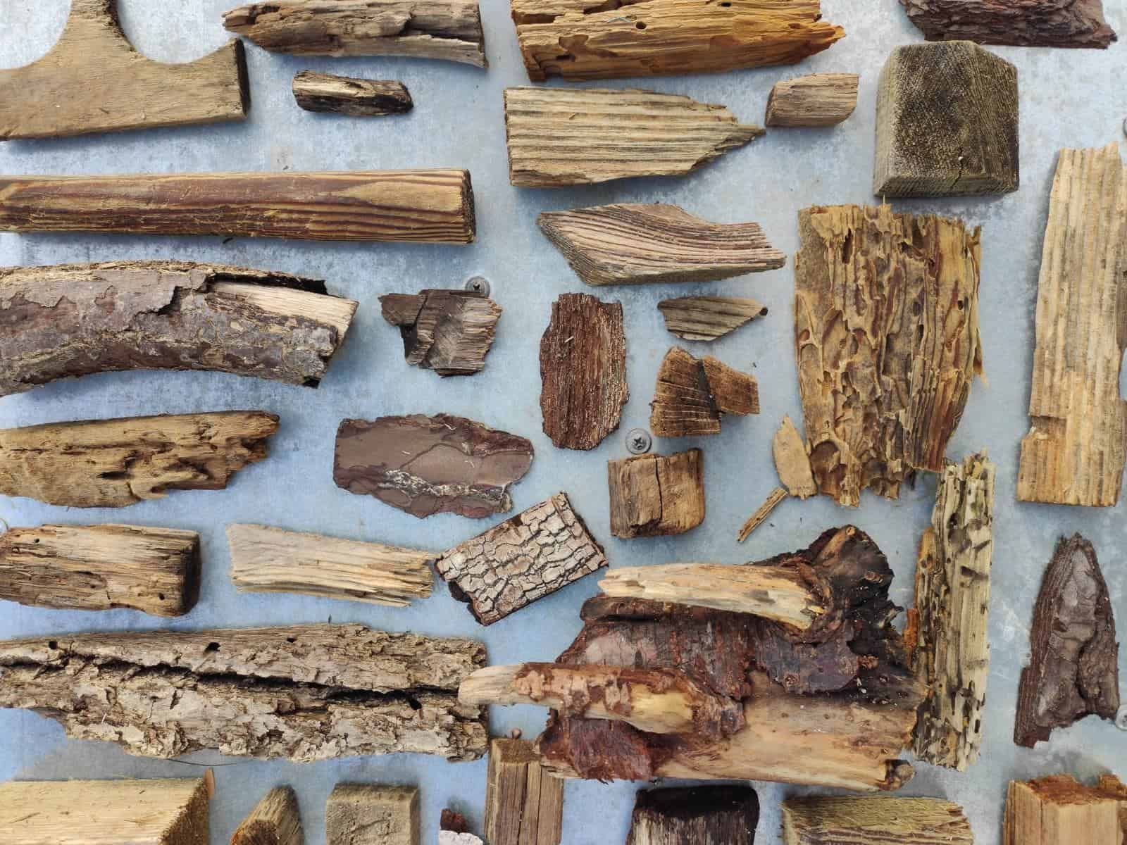 collection of driftwoods